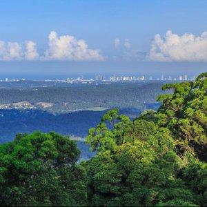 The Prestige Property Magazine - www.prestigepropertymagazine.com - Carinya: a rainforest retreat